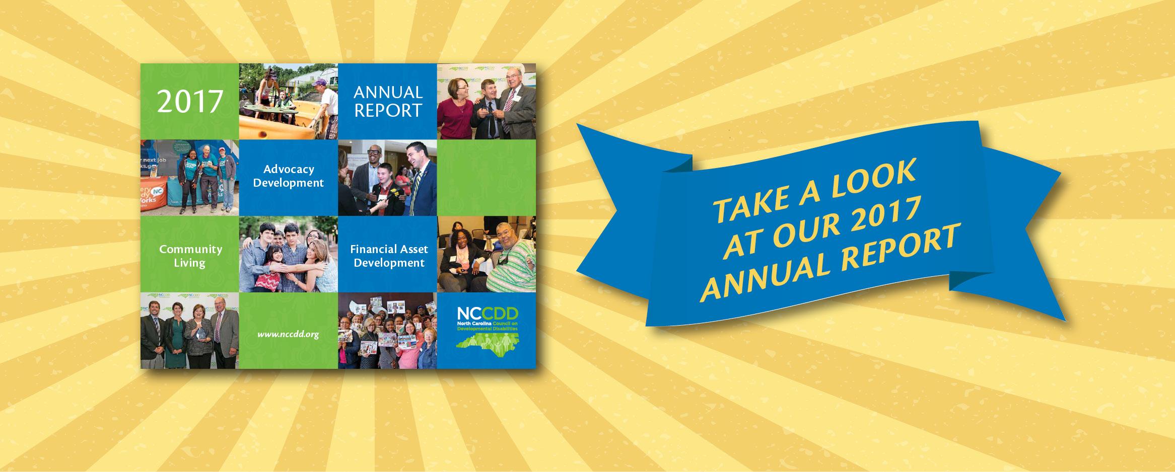 NCCDD 2017 Annual Report